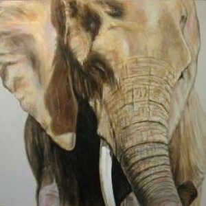 CLAIRE SANDARS  Elephant, Naples Yellow